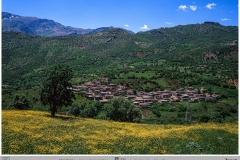 E05-T05-Afshin-Bakhtiar